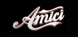 Logo di Amici edizione 12