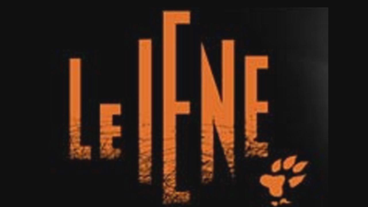 foto del logo delle iene
