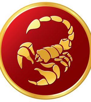 foto scorpione zodiaco