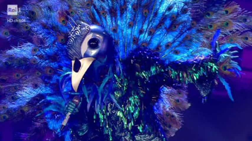 foto Pavone a Il cantante mascherato
