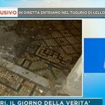 """Federica Panicucci sconvolta a Mattino 5: """"Ho visto un topo, aiuto!"""""""