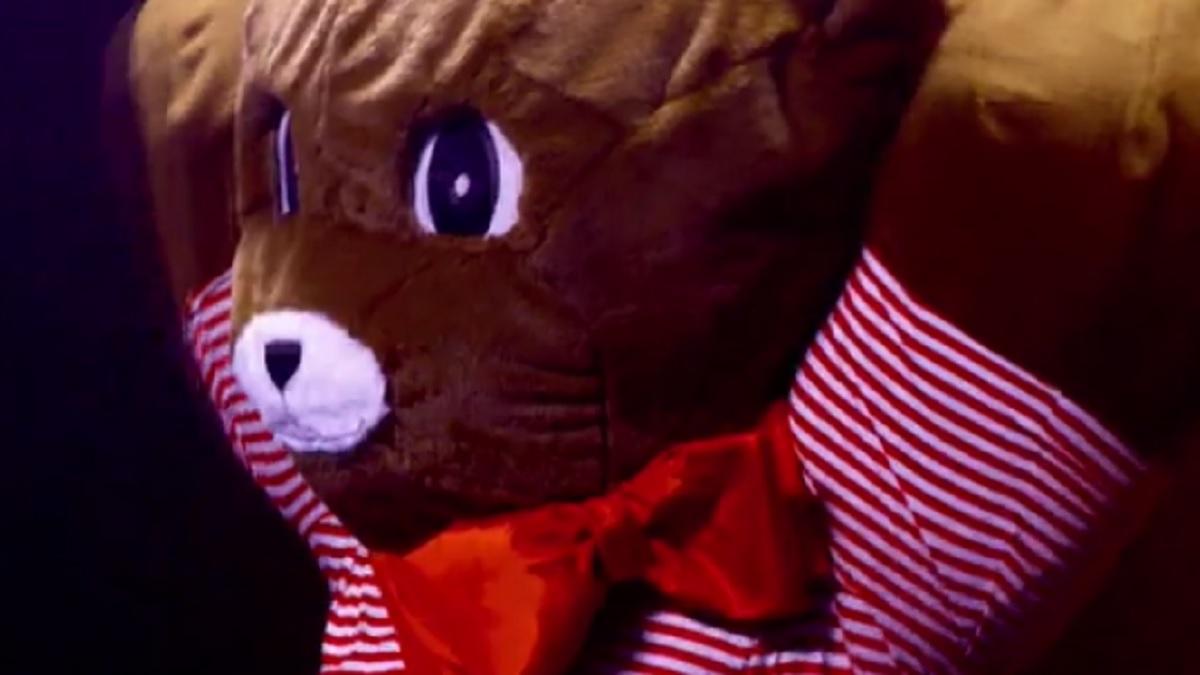 foto orsetto il cantante mascherato
