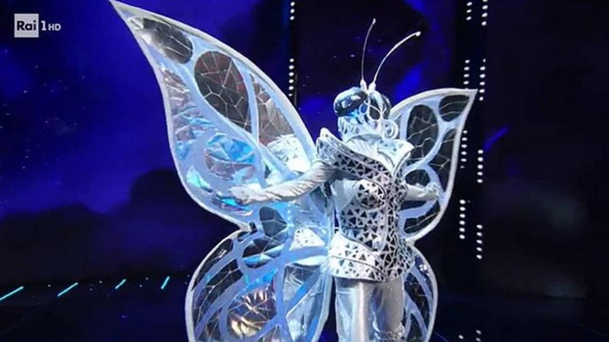 foto farfalla 4 febbraio