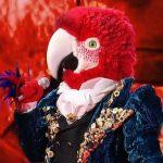 """Il pappagallo chi è? Il cantante mascherato: """"Ho un pensiero nella mente"""""""