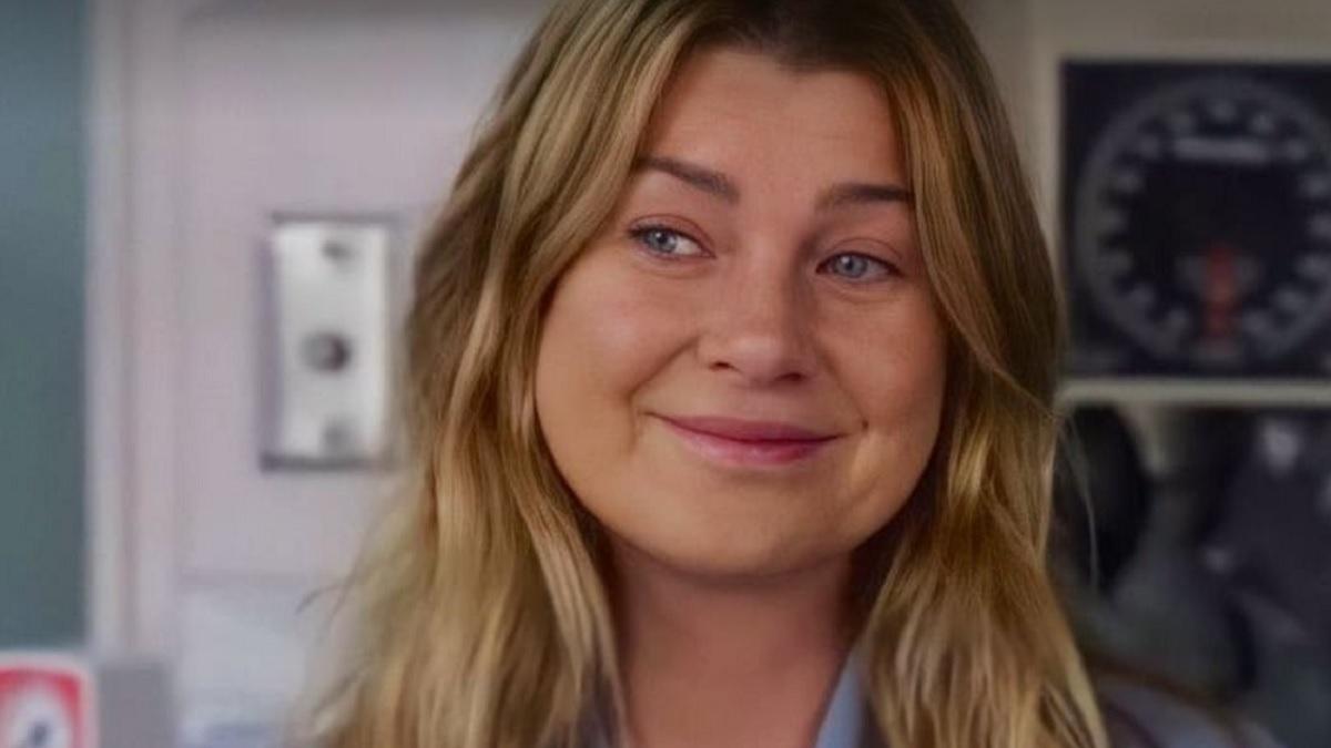 Grey's Anatomy 17 - Meredith Grey